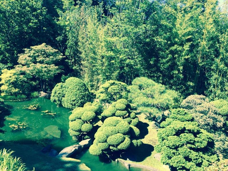mml-tea-garden
